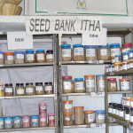 1-seed-bank-4
