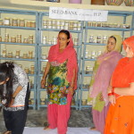 12-training-on-maintaining-seed-collection-and-seed-bank-2