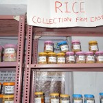8-rice-collection-from-eastern-india-2